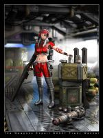 The Weapons Expert by Fredy3D