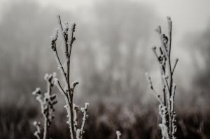 winter minimal by airsteve