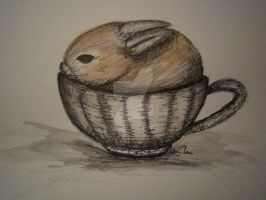 Bunny in Tea Cup by AllyClare21