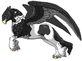 Gypsy Vanner Hippogriff by talkingmongoose