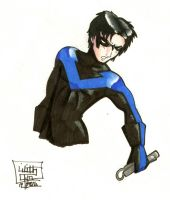 Nightwing by LilithOya