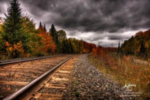 HDR Autumn Tracks 5 by Nebey