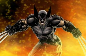 Wolverine by 1314