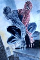 Spider man by dadia56