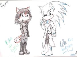 rita and life the hedgehog by ritagirl