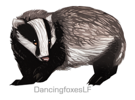 Badger by DancingfoxesLF
