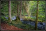 HDR Vallorbe 53 by sandpiper6