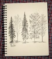 Inktober Day 4: Autumn Trees by aviagua