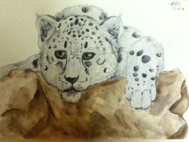 .:Leopard of the Snow:. by ThePaintingWolf