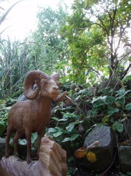 Bighornsheep 3 by woodcarve