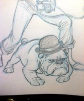 Bowler Bulldog by tombancroft