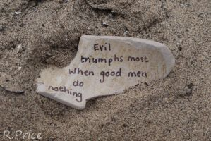 Fear The Indifference Of Good Men by Rhiallom