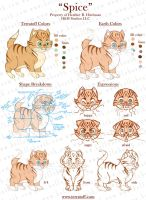 Spice Character Sheet by HeatherHitchman