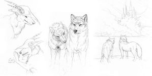 dhampir wolves by hibbary