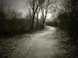 the empty path by jrdnG