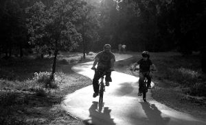evening ride in the park by photoart1