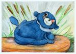 Fat Popplio by SSsilver-c