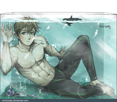 Makoto in The Fish Tank - Free! by minibuddy
