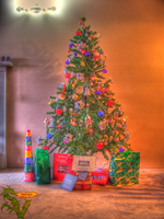 Christmas Tree HDR by shilpinator