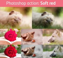 Soft red action by Pamba