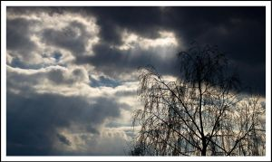 Rays of hope by luka567