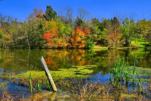 00-BeckleyCreekPark-2014-IMG-5338-HDR-WP-Master by darkmoonphoto