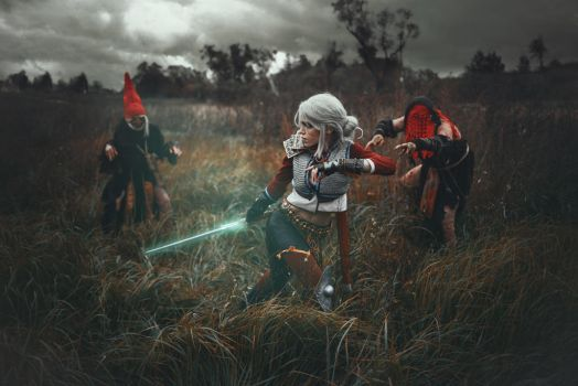 Ciri Cirilla Witcher 3 by TophWei
