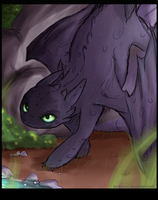 HTTYD - Toothless by BlOtBlOoD