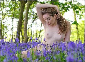 Ella Rose in Bluebells 05 by JeremyHowitt