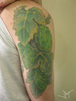 lupulus and grape leaf by Janaina