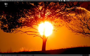 My Ubuntu Desktop1 by BlackOfWinter