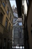 Florence dome 7 by enframed