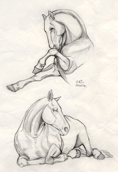 Horses by green-ermine