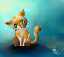 Orange and white kitty by fifisart