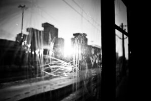 from the tram by moniczna