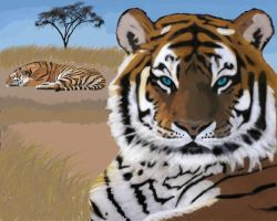 Tiger try.. by Aligna
