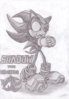 Shadow the Hedgehog by EUAN-THE-ECHIDHOG