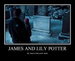 James and Lily Potter by kataanger102