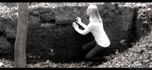 Over the Wall by frebecca