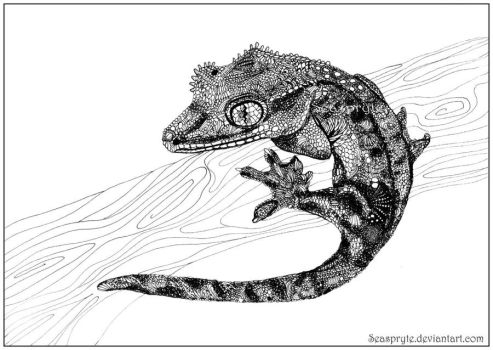 A Baby Gecko - black pen by SeaSpryte