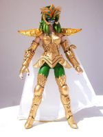 Saint Seiya Shaina Gold Cloth by argenta2008