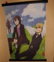 Durarara!! Wall Scroll by OppaFaustusStyle