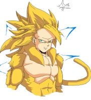 Goku - SSJ God by ayaiken