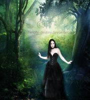 Beautifull Forest by Hekate-Destiny