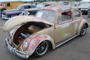 Rough 61 VW Bug by zypherion