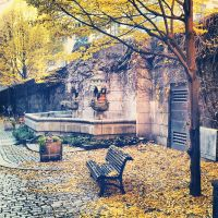 Last leaves of autumn by attomanen