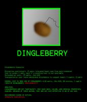 Dingleberry Analysis by Gradendine