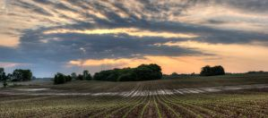 Soybean Sunrise Pano by ZachSpradlin