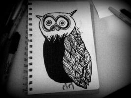 OWL by AnalieKate