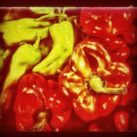 Peppers, hot and cold by wdlougee